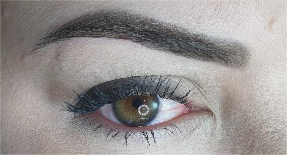 Micropigmentação de Sobrancelhas (técnica Shadow, Leve esfumada)
